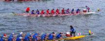 Paddle Royale