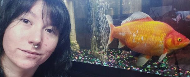 That's My Pet Foot-Long Goldfish